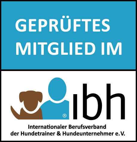 #PositiveRocks! ist eine Intiative des IBH, die ich gerne unterstütze.
